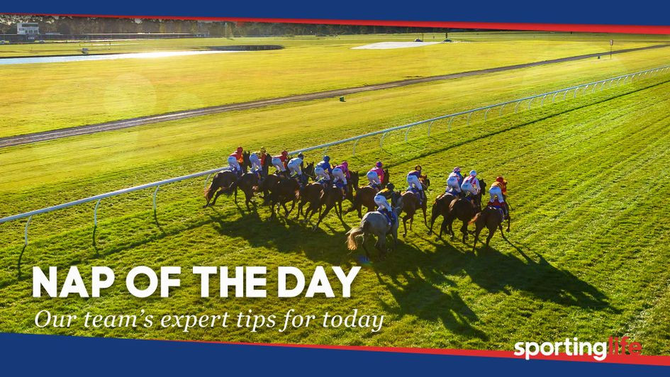 Horse betting tip of the day placepot betting slip template